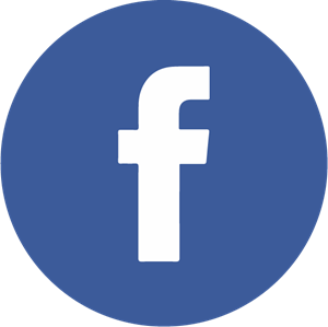Facebook Icon Logo Vector