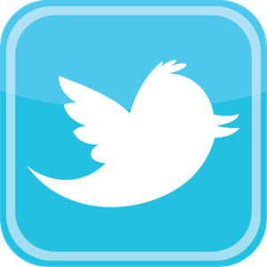 Twitter bird icon Logo Vector