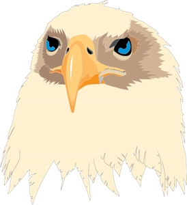 Aguia Eagle Logo Vector