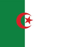 Algeria Flag Logo