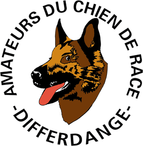 Amateurs du chien race Logo Vector