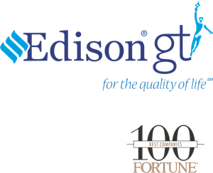 An Edison Electric Company Logo Vector