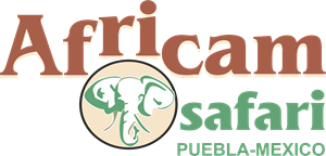 Africam Safari Logo Vector