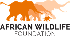 African Wildlife Foundation Logo Vector