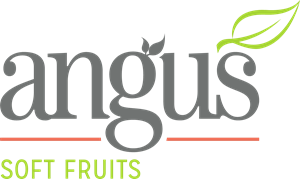 Angus Soft Fruits Logo Vector