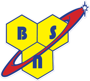 Image result for bsn logo