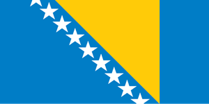 Bosnia and Herzegovina flag Logo Vector
