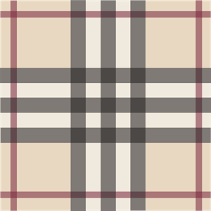 Burberry pattern Logo Vector