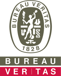 Bureau Veritas Group Logo Vector