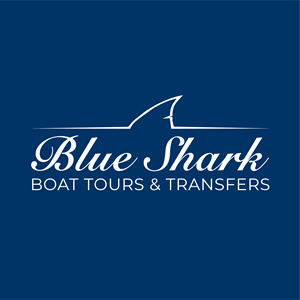 BLUE SHARK TOURS Logo Vector