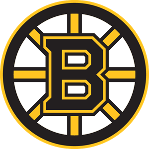 Boston Bruins Logo Vector