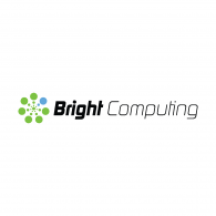 Bright Computing Logo Vector