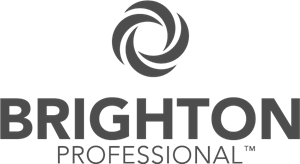 Brighton Professional Logo Vector