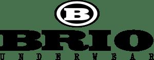 search honda brio logo vectors free download