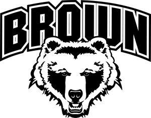 Brown Bears Logo Vector