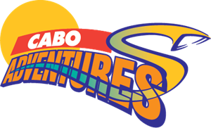 Cabo Adventures Logo Vector