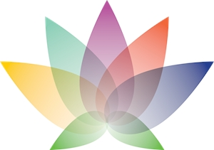 Colorful Lotus Logo Vector