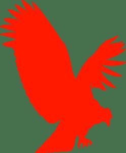 condor logo vectors free download