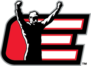 Dale Earnhardt Inc. Logo Vector