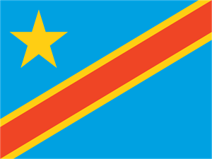 Democratic Republic of the Congo Flag Logo Vector