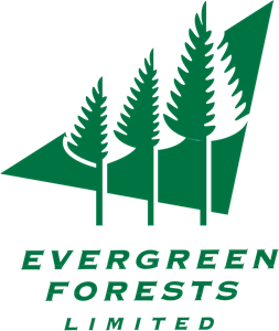 Evergreen Forests Logo Vector