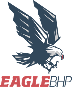 Eagle Logo Vector