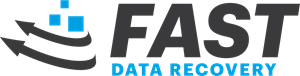 Fast data recovery Logo Vector