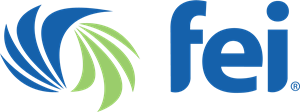 Financial Executives International FEI Logo Vector