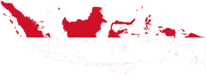 Flag map of Indonesia Logo Vector