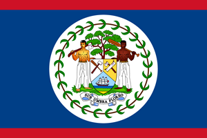 Flag of Belize Logo Vector
