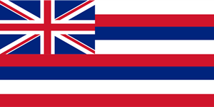 FLAG OF HAWAII Logo Vector