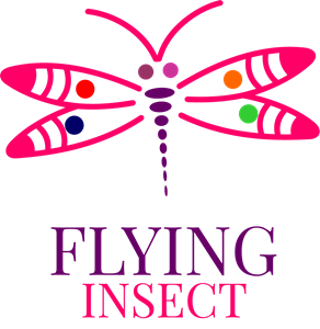 Flying Insect Logo Vector