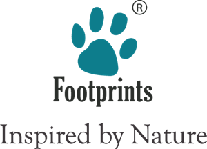 Footprints Logo Vector