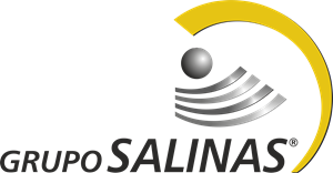 grupo salinas logo vector cdr