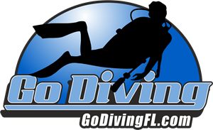 Go Diving FL Logo Vector