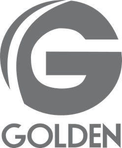 Golden TV Logo Vector