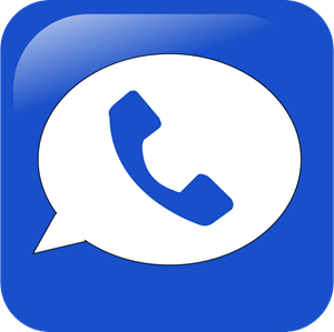 Google voice Logo Vector