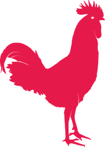 horoz rooster Logo Vector
