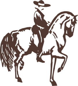 Horse Design Logo Vector