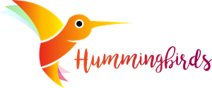 Humming Orange Bird Logo Vector