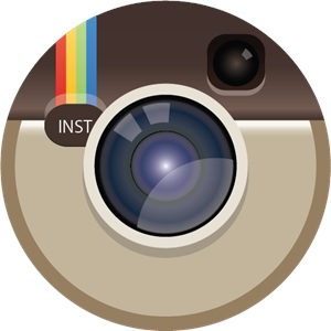 Instagram color icon Logo Vector