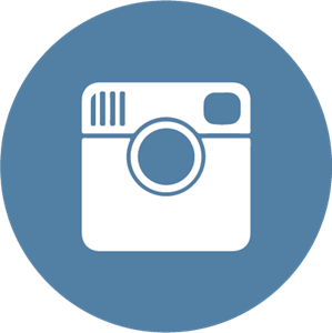 Instagram flat icon circle Logo Vector