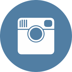 Instagram Icon Logo Vector