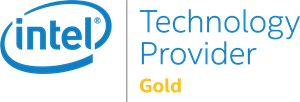 Intel Technology Provider Gold Logo Vector