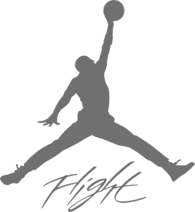 Air Jordan Logo Vol