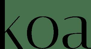 koa javascript backend web framework