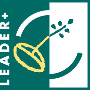 Leader Plus Logo Vector