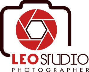 leo studio photographer Logo Vector