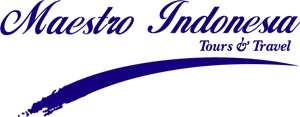 Maestro Tours & Travel Logo Vector