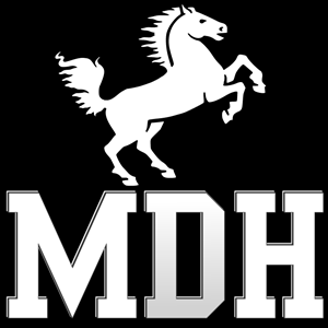 Musical Dark Horse Logo Vector